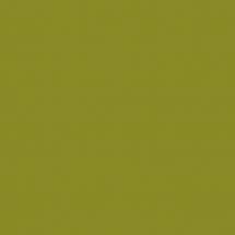 645 - Олива (глянець) - ТЕКСТУРА