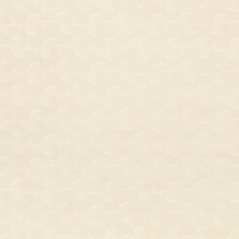 650 - Тюльпан кремовий (глянець) - ТЕКСТУРА