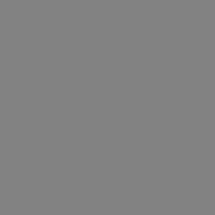 0171 PE Серый Шифер