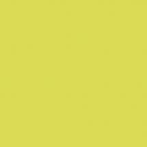 5519 BS Зеленый Лайм