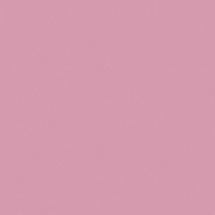 8534 BS Роза