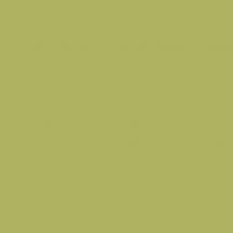 8996 BS Океан Зеленый