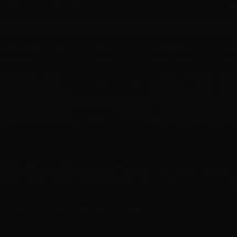 W015 Черный