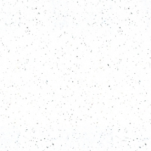 K217_White Andromeda
