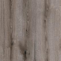 K366_Fossil Evoke Oak